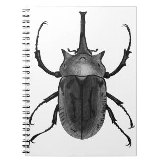Beetle Drawing Design Spiral Notebook
