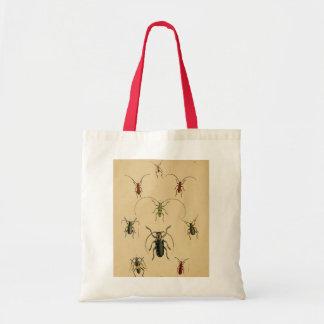 Beetle Entomology Tote