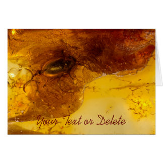 Beetle in amber card
