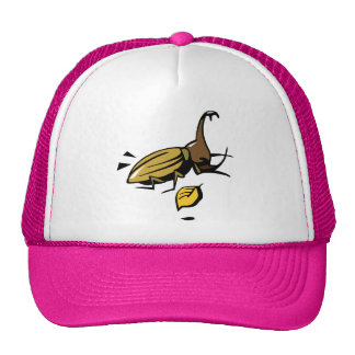 Beetle Insect Bug Nature Cartoon Art Animal Hat