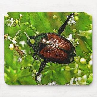 Beetle Mousepads