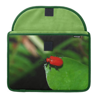 Beetle of shining red color in the leaf MacBook pro sleeve