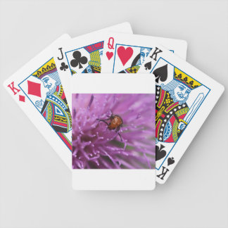 Beetle on a Milk Thistle Deck Of Cards