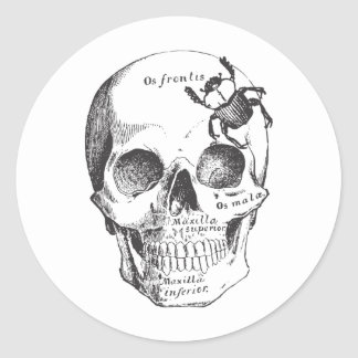 Beetle on a Skull Classic Round Sticker