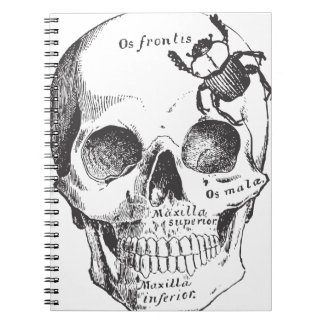 Beetle on a Skull Notebook