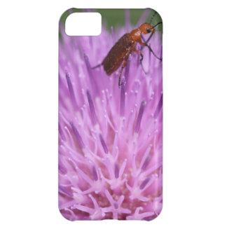 Beetle on Purple Milk Thisle Photograph iPhone 5C Case