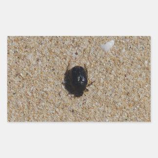 Beetle On Sand Nature Photo Rectangular Sticker