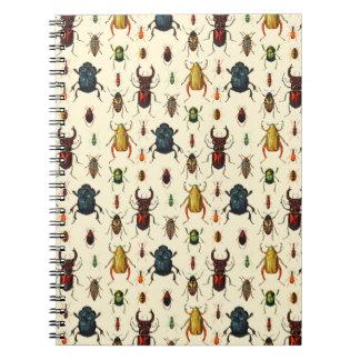Beetle Varieties Notebook