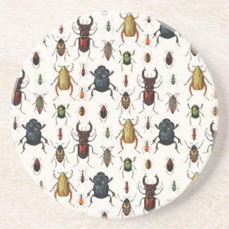 Beetle Varieties Sandstone Coaster
