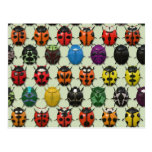 BeetleMania - Tarjetas Postales