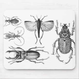 Beetles and Bugs Mouse Pad
