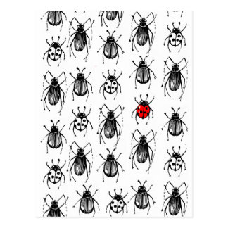 Beetles and ladybug postcard
