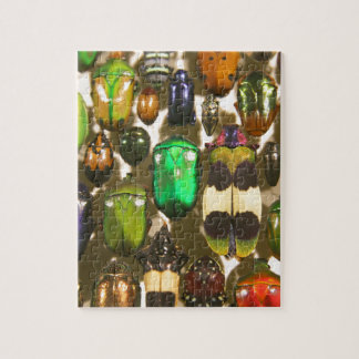 Beetles, Bugs and Insects Jigsaw Puzzle