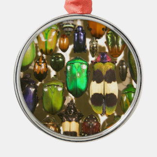 Beetles, Bugs and Insects Christmas Ornament
