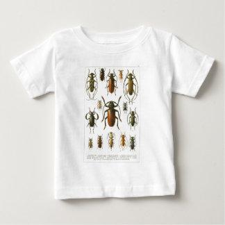 beetles-clip-art-3 infant t-shirt