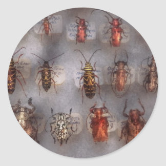 Beetles - The usual suspects Classic Round Sticker