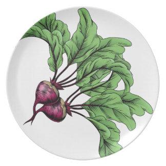 Beets vintage woodcut illustration plates