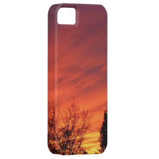 Before the Storm ~ iPhone 5 CaseMate iPhone SE/5/5s Case