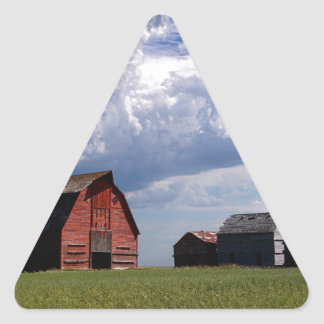 Before the Storm Triangle Sticker