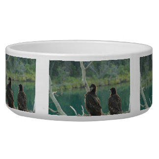 BEG Bald Eagle Grooming Bowl