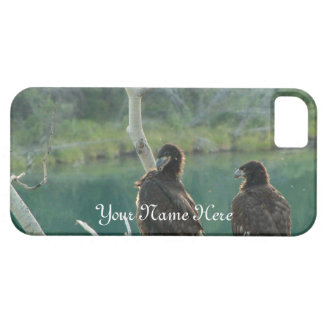BEG Bald Eagle Grooming iPhone SE/5/5s Case