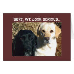 BEG FOR TREATS SOON WELL WISHES GREETING CARD