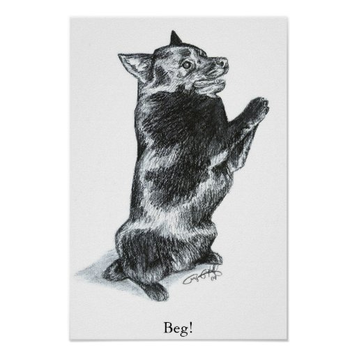 Beg! Poster