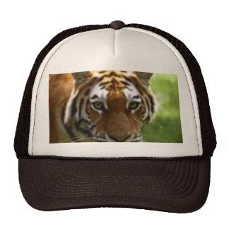 Begal Trucker Hat