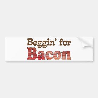 Beggin' for Bacon Bumper Sticker