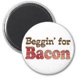 Beggin' for Bacon Fridge Magnets