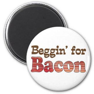 Beggin' for Bacon Magnet