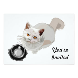 Begging Cat with Empty Food Bowl 5x7 Paper Invitation Card