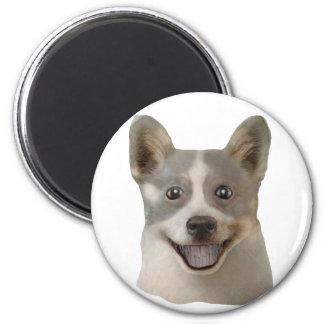 Begging Dog (Lone Image) Mult Products Refrigerator Magnet