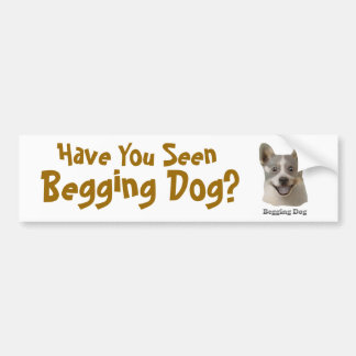 Begging Dog With Text - Mult Products Bumper Sticker