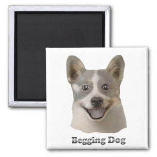 Begging Dog With Text - Mult Products Magnets