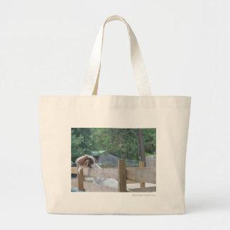 begging goat bags