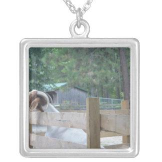 begging goat custom jewelry