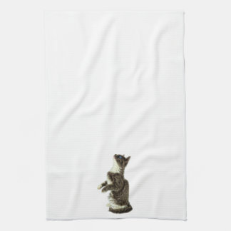 Begging Grey & White CAt Hand Towels