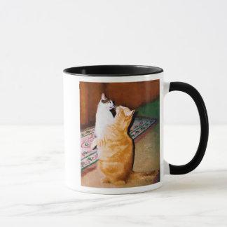 Begging kitties mug