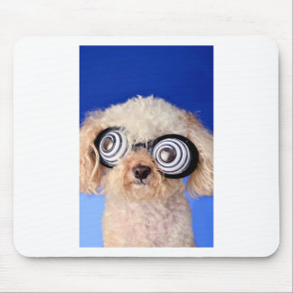Begging Poodle Mouse Pad