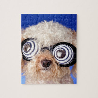 Begging Poodle Jigsaw Puzzles
