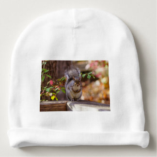 Begging Squirrel Baby Beanie