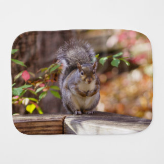 Begging Squirrel Burp Cloth