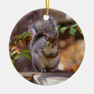 Begging Squirrel Ceramic Ornament