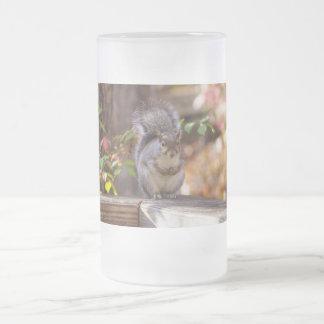 Begging Squirrel Frosted Glass Beer Mug