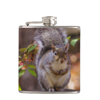 Begging Squirrel Hip Flask