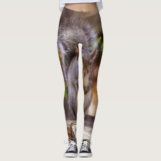Begging Squirrel Leggings