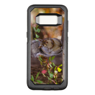 Begging Squirrel OtterBox Commuter Samsung Galaxy S8 Case