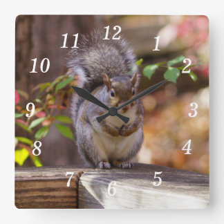 Begging Squirrel Square Wall Clock