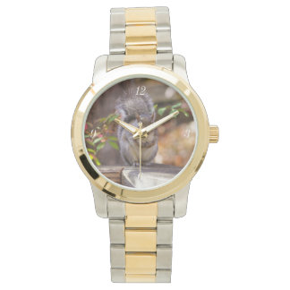 Begging Squirrel Wrist Watch
